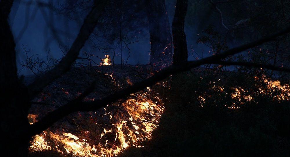Foça, orman yangını