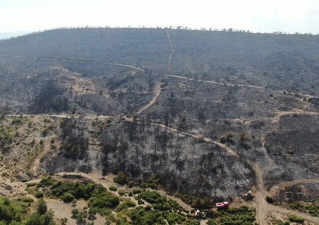 İzmir Foça'daki yangı