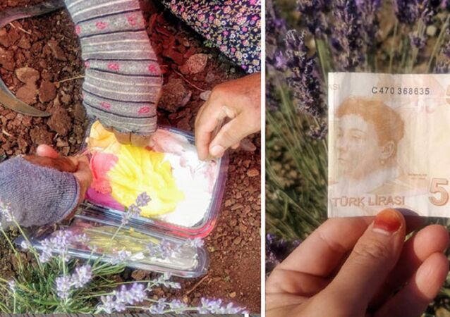 Tarlada çalışan kadın işçilere dondurma alınması için 50 lira bıraktı
