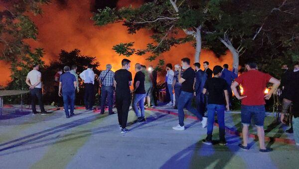 Düğün salonundan atılan havai fişekler, Burdur Gölü'ndeki sazlıkta yangına neden oldu - Sputnik Türkiye
