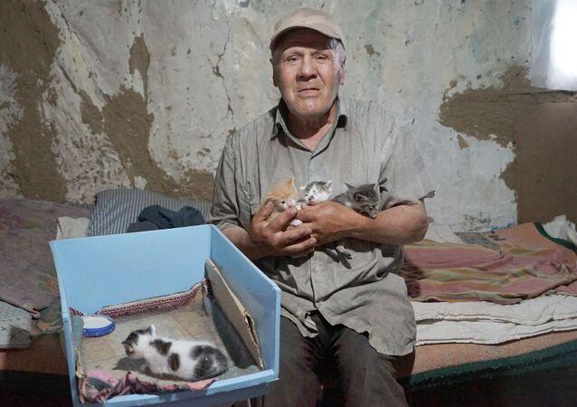 Kastamonu barakasını kedilerle paylaşan 68 yaşındaki Nazmi Özsoy