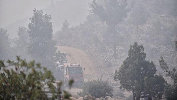 Mersin - orman yangını - Sputnik Türkiye