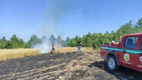 Bilecik - tarım arazisi - yangın - Sputnik Türkiye
