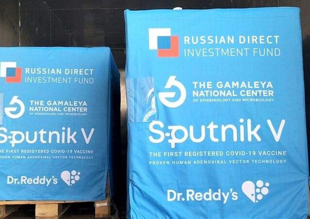 Hindistan Rusya koronavirüs aşısı