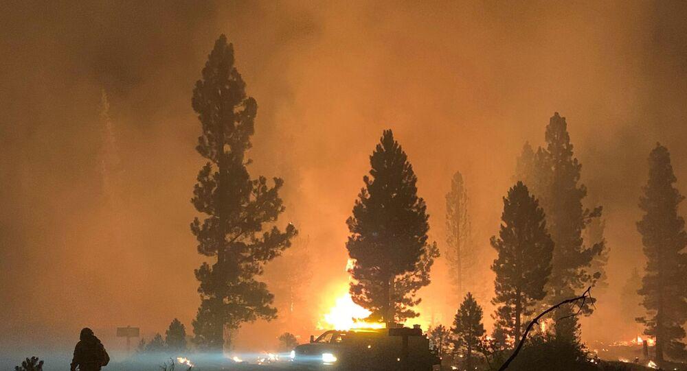 ABD'nin en büyük orman yangını: Los Angeles büyüklüğünde bir alan kül oldu