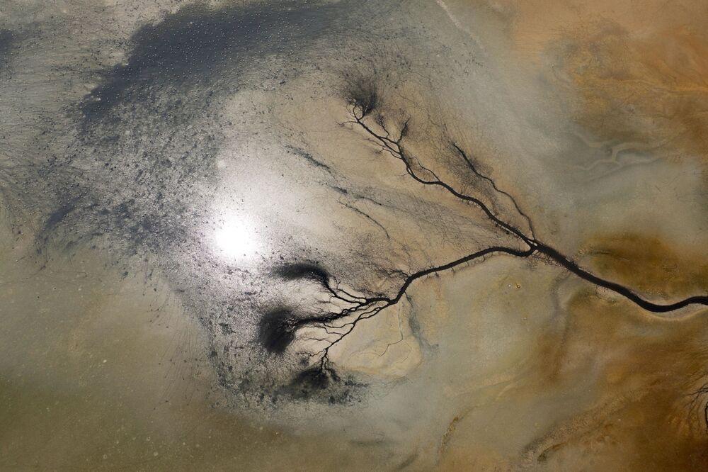 'Sulak alanlar', 'ormanlar', 'denizler ve kıyılar', 'bozkırlar', akarsular ve dereler', 'dağlar, vadiler ve kanyonlar' olarak habitatların anlatılacağı 'Anadolu Kadim Doğa' adlı belgesel 6 bölümden oluşacak. Her habitatın en az iki kere ve dört mevsimde olmak kaydıyla çekimleri yaklaşık 2.5 yıl sürecek.