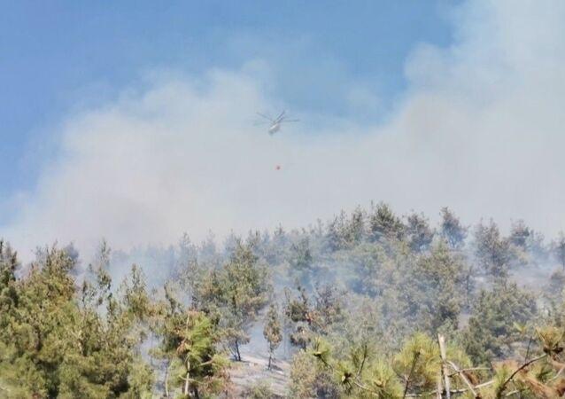 Kahramanmaraş'ta ormanlık alanda çıkan yangın