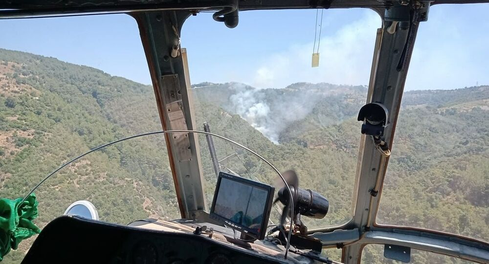 İzmir Güzelbahçe ormanlık alanda yangın