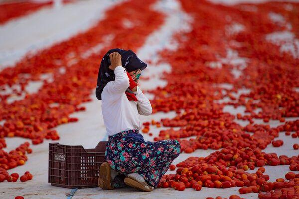 Saatlerce güneşin altında çalışan işçiler, kendilerince aldıkları önlemlerle güneşten etkilenmemek için de mücadele ediyor.  - Sputnik Türkiye