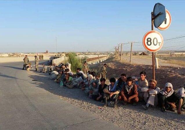 afgan mülteci