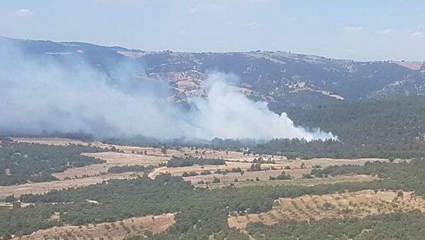 Manisa'da orman yangını - Sputnik Türkiye