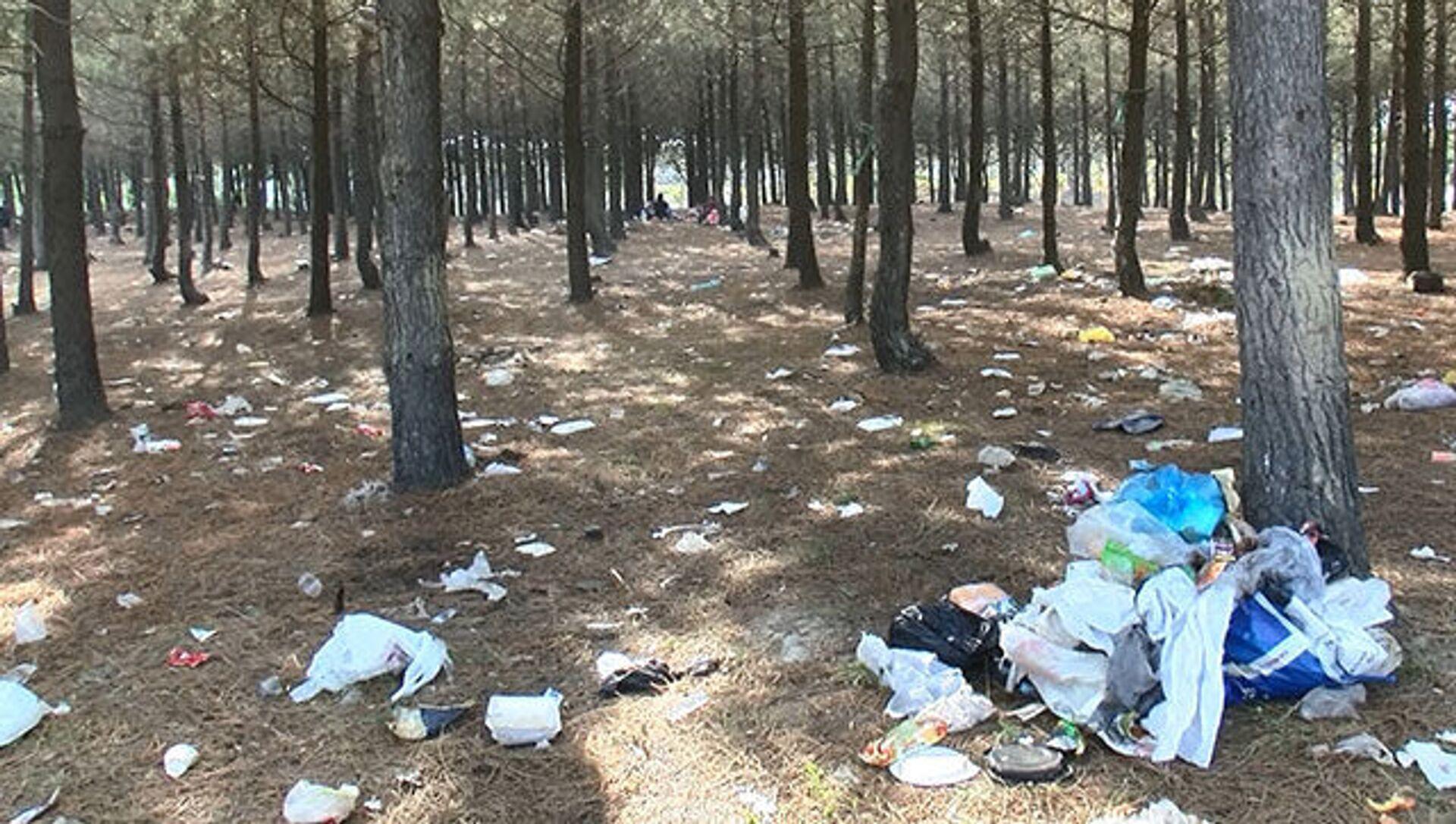 Piknikçilerden geriye çöp yığınları kaldı - Sputnik Türkiye, 1920, 23.07.2021