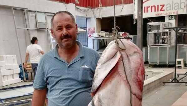 Kahramanmaraş'ta 2 metrelik yayın balığı - Sputnik Türkiye