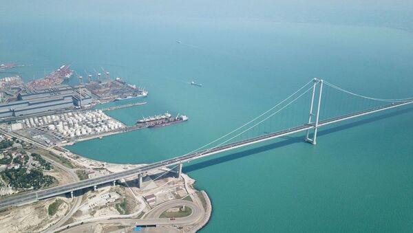 İzmit Körfezi, plankton nedeniyle turkuaz - Sputnik Türkiye