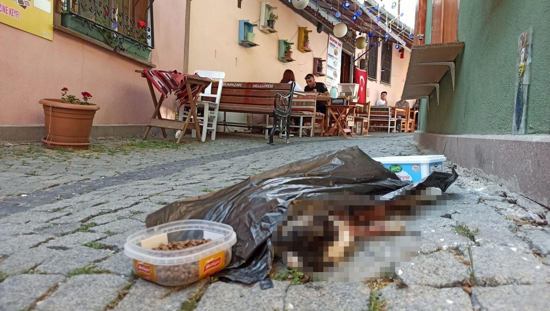 Eskişehir'in Tarihi Odunpazarı Evlerinin bulunduğu bölgede iddiaya göre bir sokak kedisi öldürülerek mama ve su kabının yanına atıldı. - Sputnik Türkiye, 1920, 25.07.2021