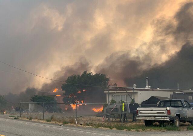Kanada'da termometrenin tüm zamanların sıcaklık rekoru 49.6 dereceyi görmesine koşut çıkan orman yangınları