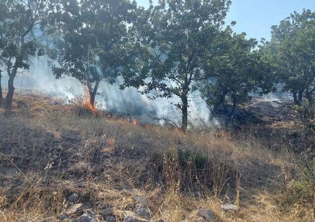 Çanakkale'nin Ezine ilçesinde bulunan ormanlık alanda yangın çıktı. Yangında, meşe ve pırnal ağaçlarının bulunduğu 10 hektar alan zarar gördü.