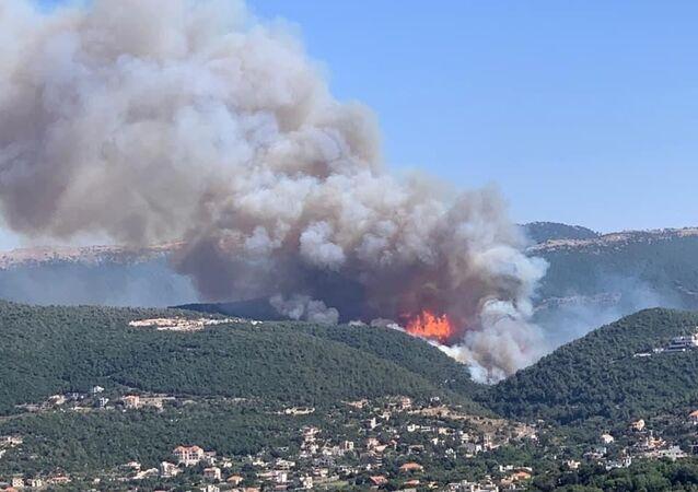 Lübnan'da orman yangını: Evlere ve çiftliklere sıçradı