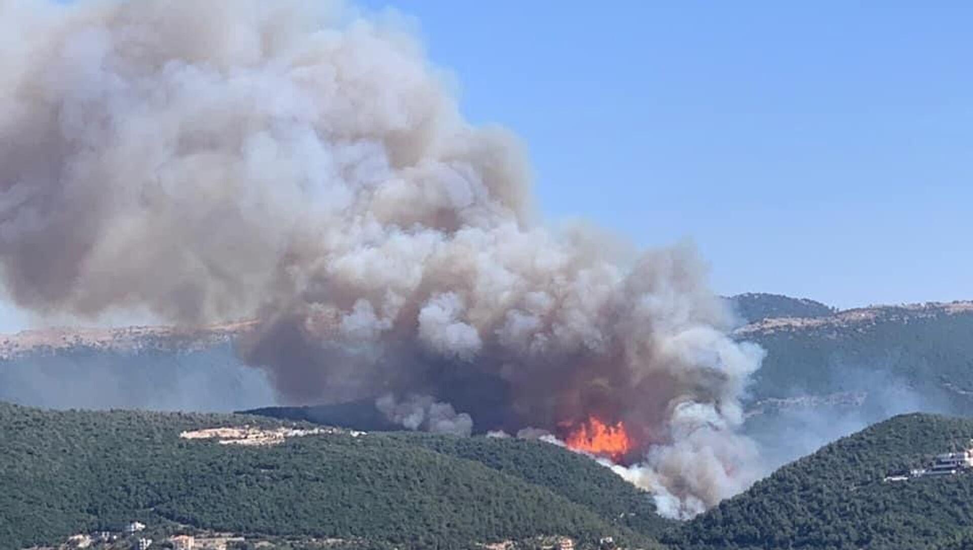Lübnan'da orman yangını: Evlere ve çiftliklere sıçradı - Sputnik Türkiye, 1920, 30.07.2021