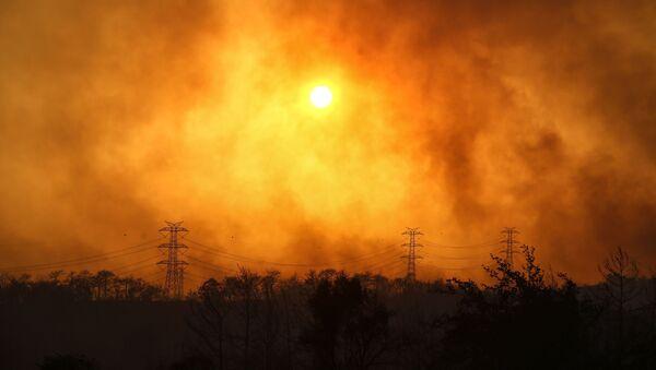 Manavgat yakınlarındaki orman yangınından yükselen dumanlar. - Sputnik Türkiye