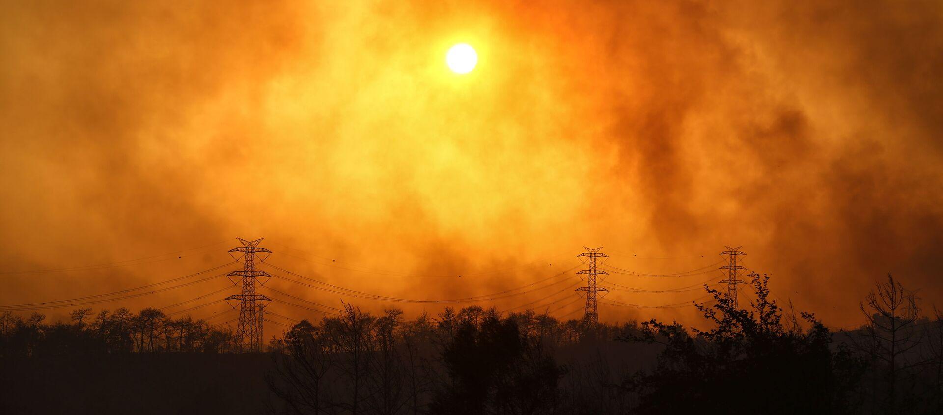 Manavgat yakınlarındaki orman yangınından yükselen dumanlar. - Sputnik Türkiye, 1920