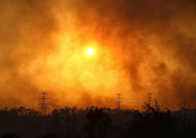 Manavgat yakınlarındaki orman yangınından yükselen dumanlar.