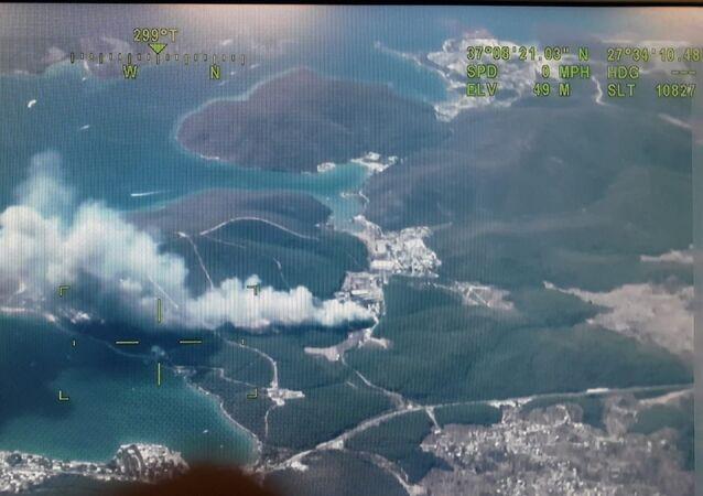 Bodrum'da da orman yangını