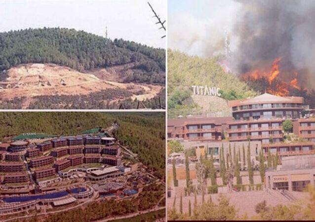 Çıkan yangında yanan ağaçların yerine dikilen otel, yangın nedeniyle tahliye edildi