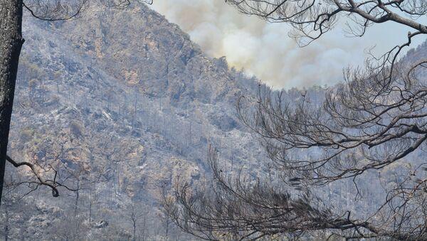 Marmaris'teki orman yangını - Sputnik Türkiye