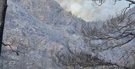 Marmaris'teki orman yangını