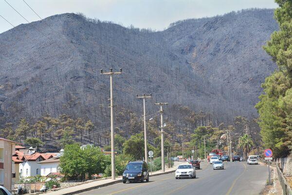 Alevler, kuru otlar ve rüzgarın da etkisiyle kısa sürede yayıldı. - Sputnik Türkiye