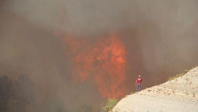 Orman yangını sırasında alevler 20- 30  metreye ulaştı.