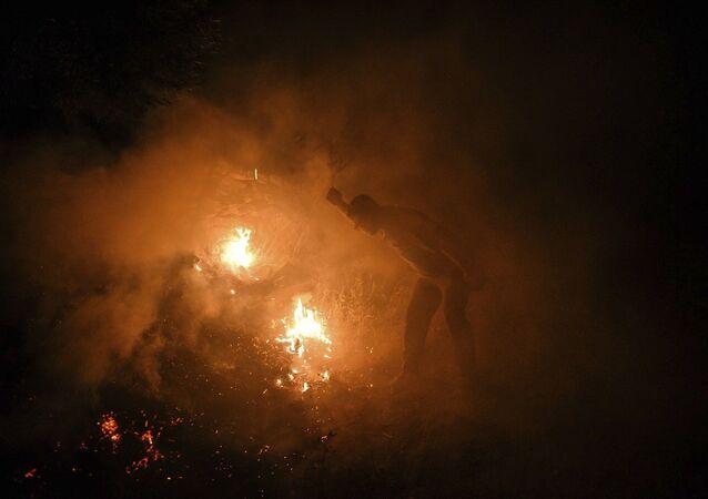Manavgat - orman yangını