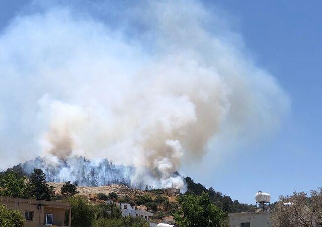 Kuzey Kıbrıs - orman yangını