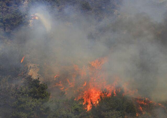 Lübnan - orman yangını