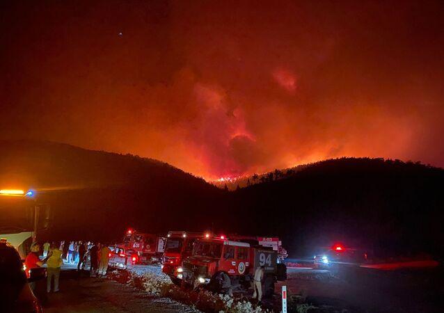 Milas'ın Beyciler Mahallesi'nde başlayan orman yangını, Bodrum'a sıçradı