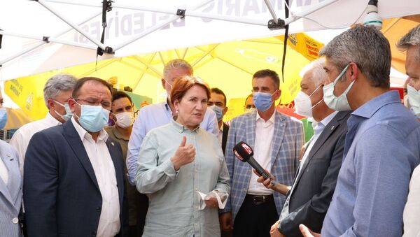 Meral Akşener - Yangın - Orman Yangını - Sputnik Türkiye