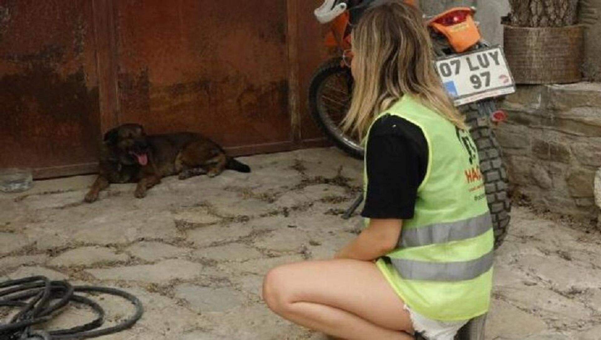 Ölen çiftin köpekleri evin önünden ayrılmıyor - Sputnik Türkiye, 1920, 01.08.2021