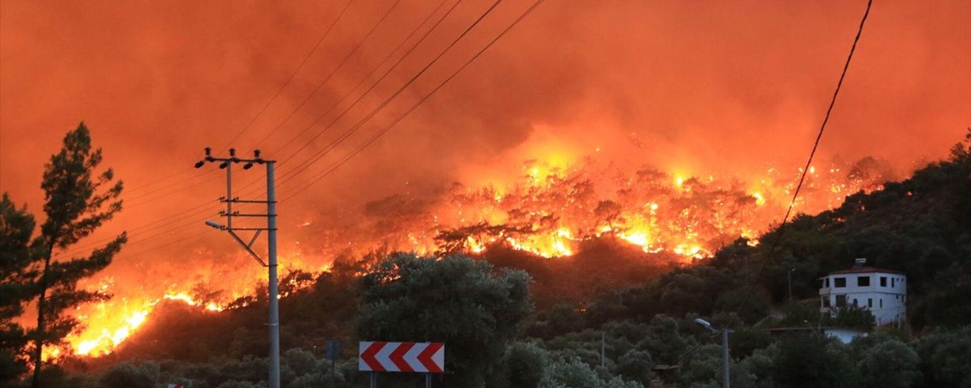 Muğla'nın Milas ilçesinde, ormanlık alanda çıkan ve yerleşim yerlerine sıçrayan yangın, kontrol altına alınmaya çalışılıyor. - Sputnik Türkiye, 1920, 01.08.2021