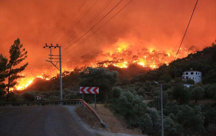 Muğla'nın Milas ilçesinde, ormanlık alanda çıkan ve yerleşim yerlerine sıçrayan yangın, kontrol altına alınmaya çalışılıyor.