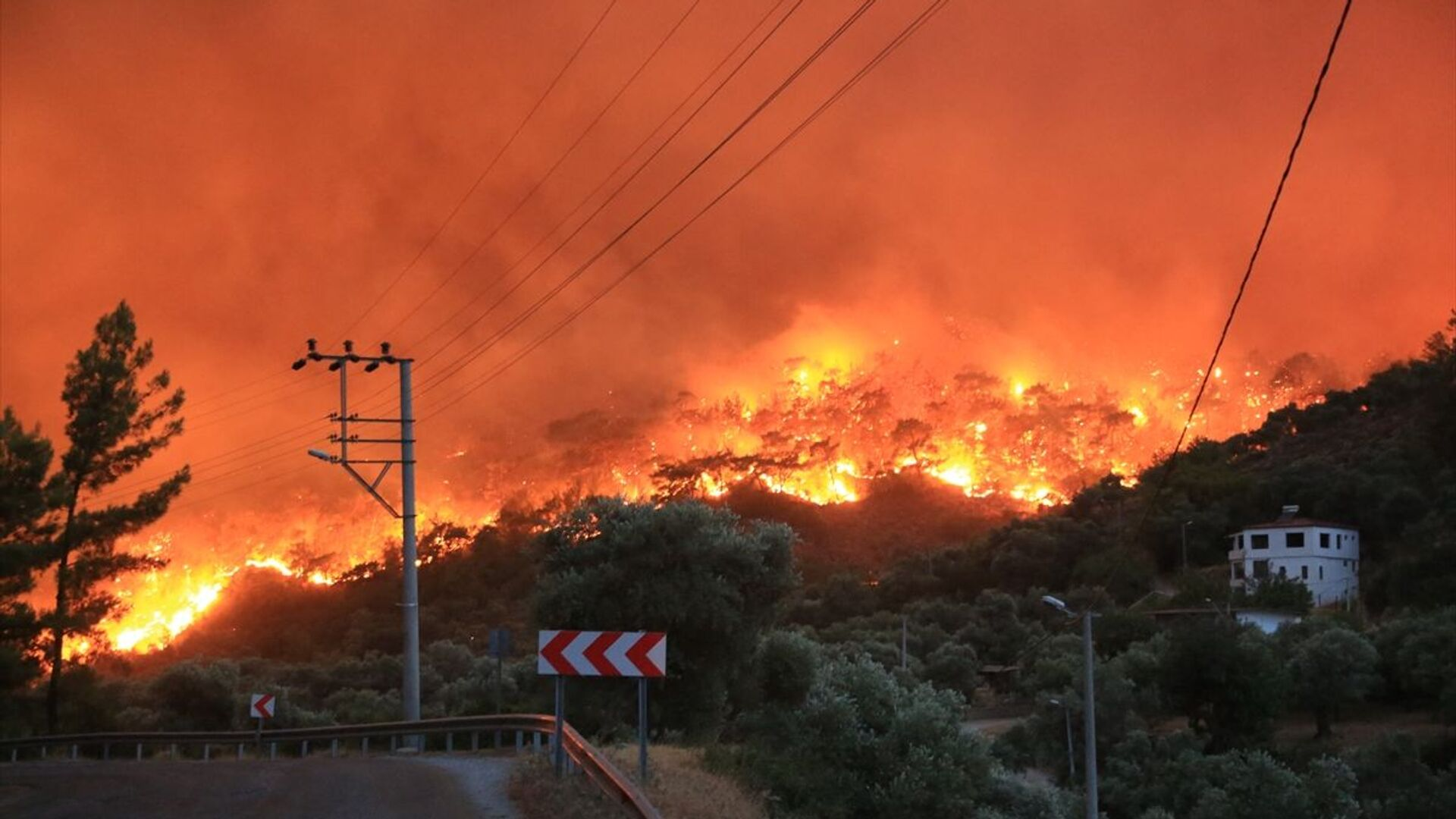 Muğla'nın Milas ilçesinde, ormanlık alanda çıkan ve yerleşim yerlerine sıçrayan yangın, kontrol altına alınmaya çalışılıyor. - Sputnik Türkiye, 1920, 02.08.2021