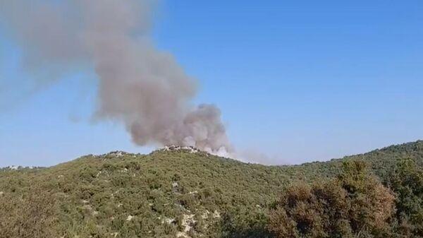 Antalya Demre'de de orman yangını çıktı - Sputnik Türkiye