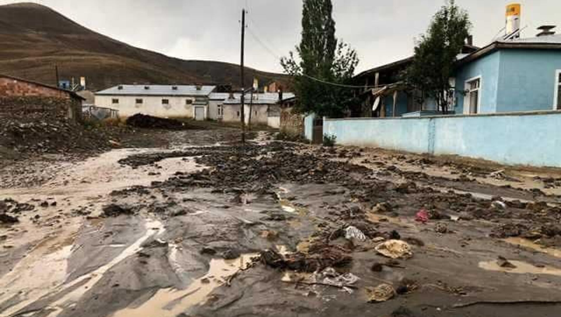 Bayburt'ta sağanak sele neden oldu: 11 hayvan öldü - Sputnik Türkiye, 1920, 02.08.2021