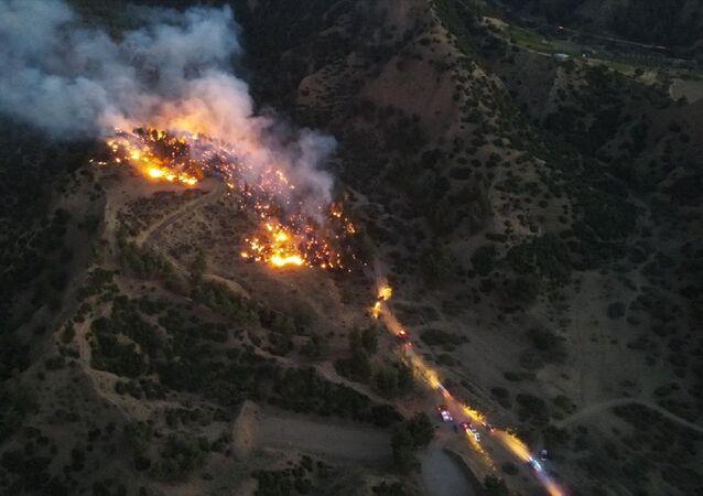 Manisa - Salihli ilçesinde çıkan orman yangını