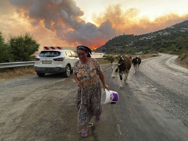 Bodrum'da yangının etkili olduğu Çökertme köyünden bir kare - Sputnik Türkiye