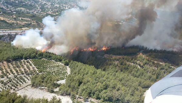 Hatay'ın Dörtyol ilçesinde ormanlık alanda henüz belirlenemeyen bir nedenle yangın çıktı - Sputnik Türkiye