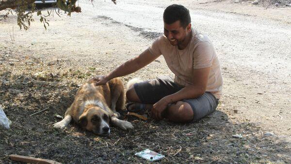 Manavgat Sercan Bayar ve köpeği Aslan - Sputnik Türkiye