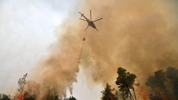 Yunanistan - yangın - orman yangını - Sputnik Türkiye