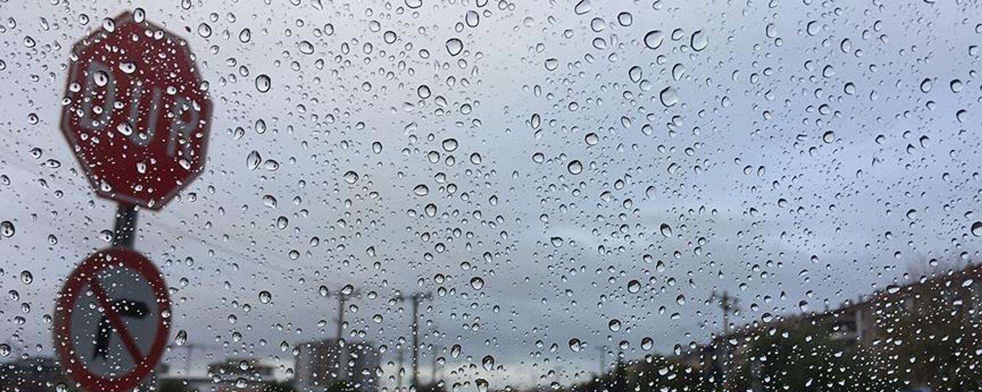 yağış, sağanak yağış, yağmur - Sputnik Türkiye, 1920, 18.08.2021