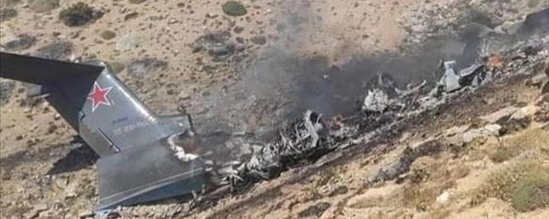 Kahramanmaraş'ta Orman Genel Müdürlüğü hizmetinde kullanılan yangın söndürme uçağı düştü, bölgeye arama kurtarma ekipleri sevk edildi.  - Sputnik Türkiye, 1920, 14.08.2021